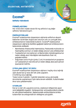 Excenel® - ViDizayn