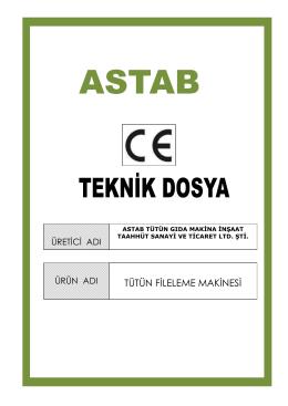 ce_test raporu