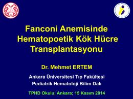 Mehmet Ertem