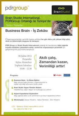 Business Brain - İş Zekâsı