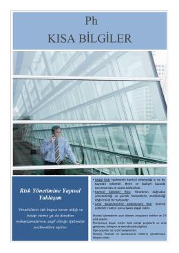Risk Yönetimine Yapısal Yaklaşım