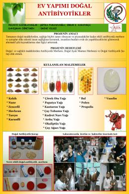 Ev Yapımı Doğal Antibiyotikler