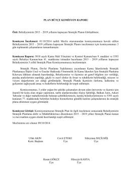 stratejik plan 2015-2019 yıllarını kapsayan komisyon raporu