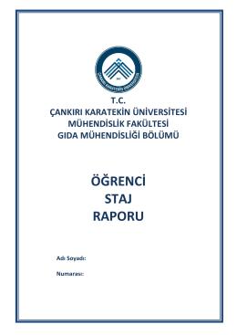 staj raporu - Mühendislik Fakültesi