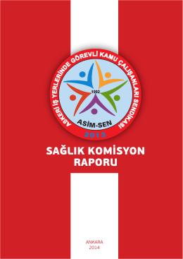 sağlık komisyon raporu