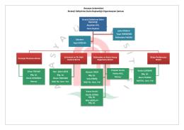 Organizasyon Şeması - Amasya Üniversitesi