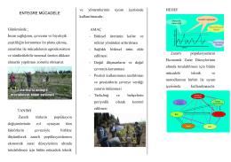 Entegre Mücadele - Ankara İl Gıda Tarım ve Hayvancılık Müdürlüğü