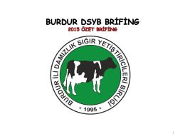 Özet Brifing - 2015