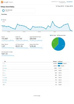 GOOGLE Analytics muhasebedr.com, Kitle