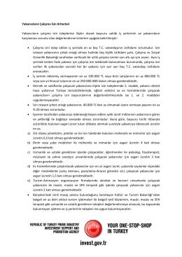Yabancıların Çalışma İzin Kriterleri