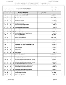 1.7 bütçe giderlerinin fonksiyonel sınıflandırılması tablosu