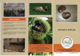 kültürel önlemler - Aydın İl Gıda Tarım ve Hayvancılık Müdürlüğü