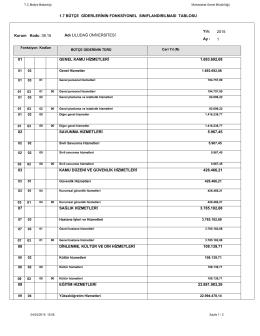 1.7 bütçe giderlerinin fonksiyonel sınıflandırılması tablosu 01 02 03