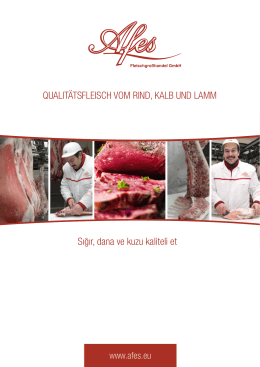 Portfolio - Afes GmbH Groß
