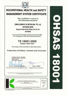 TS 18001:2008 İŞ SAĞLIĞI VE GÜVENLİĞİ (İngilizce)