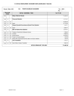 Bütçe Giderlerinin Ekonomik Sınıflandırılması