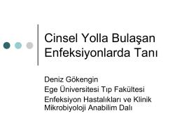 Prof. Dr. Deniz Gökengin