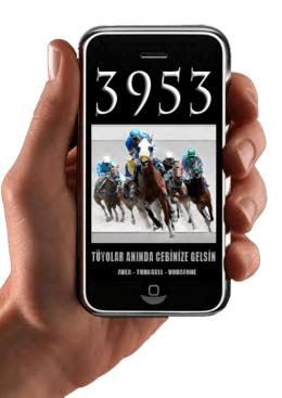 3953 - Liderform