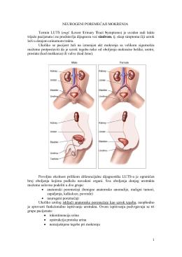 Neurourologija