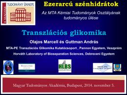 Transzlációs glikomika - ERC - Magyar Tudományos Akadémia