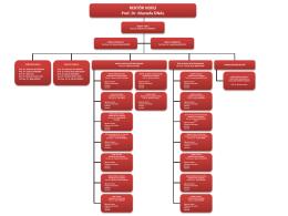 akademik organizasyon şeması