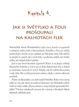 Kapitola 4.