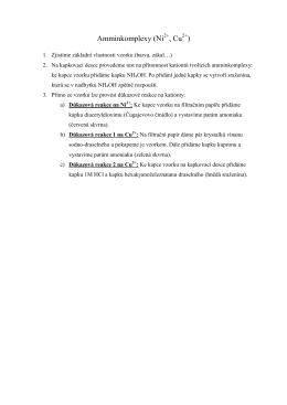 Amminkomplexy (Ni , Cu )