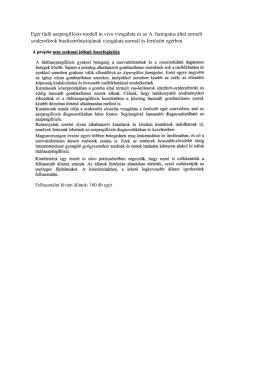 Egér tüdő aszpergillózis modell in vivo vizsgálata és az A. fumigatus