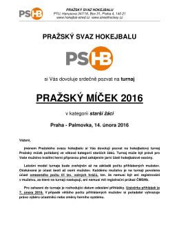 propozice - HOKEJBAL