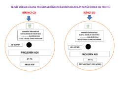 örnek proje cd formatı - sosyal bilimler enstitüsü