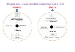 örnek tez cd formatı - sosyal bilimler enstitüsü
