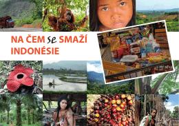 (se) smaží Indonésie