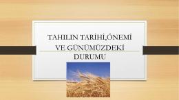 1.tahıl teknolojisi