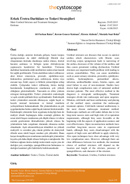 Erkek Üretra Darlıkları ve Tedavi Stratejileri - Cystoscope E