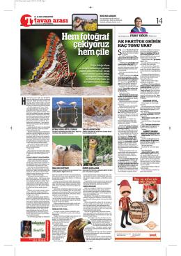 Türkiye Gazetesi – 13 Haziran 2015 Cumartesi İç Tam