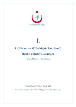 1.TİG ve MTS Odaklı Çalıştay Dokümanı