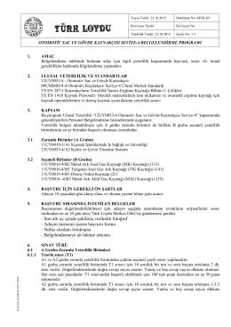 Otomotiv Sac ve Gövde Kaynakçısı Seviye-4