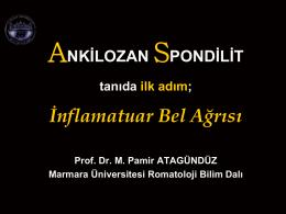Prof. Dr. Mehmet Pamir ATAGÜNDÜZ