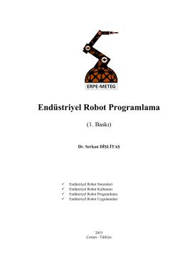 Endüstriyel Robot Programlama - Erpe