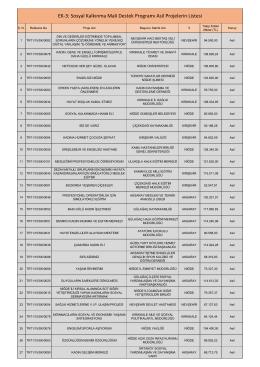 Sosyal Kalkınma Mali Destek Programları Asil Liste
