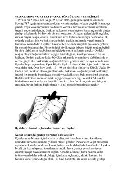 Wake Türbülansı - Prof. Dr. Ural Akbulut