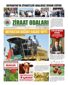BAYRAKTAR BUĞDAY HASADI YAPTI - Türkiye Ziraat Odaları Birliği