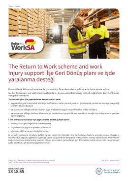 The Return to Work scheme and work injury