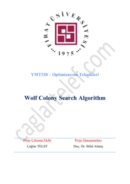 A Wolf Colony Algorithm