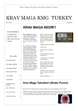 Nisan - Krav Maga Global