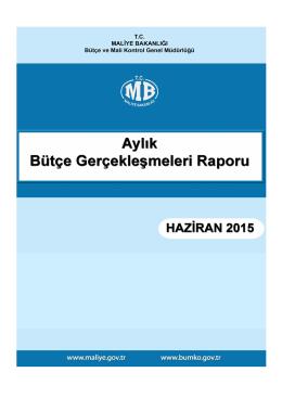 2015 Haziran Ayı Bütçe Gerçekleşmeleri Raporu