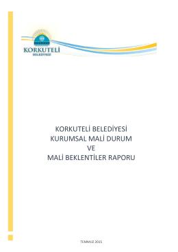 mali durum ve mali beklenti raporu 2015