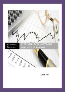 Kurumsal Durum ve Mali Beklentiler Raporu (2015)