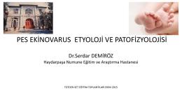 Dr. Serdar Demiroz