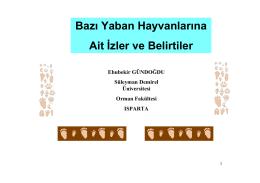 Sincap - SDÜ Orman Fakültesi - Süleyman Demirel Üniversitesi